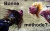 Bonne_mthode